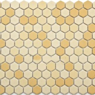 Gạch Mosaic lục giác MSG250428